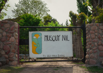 Musquy Nil 2
